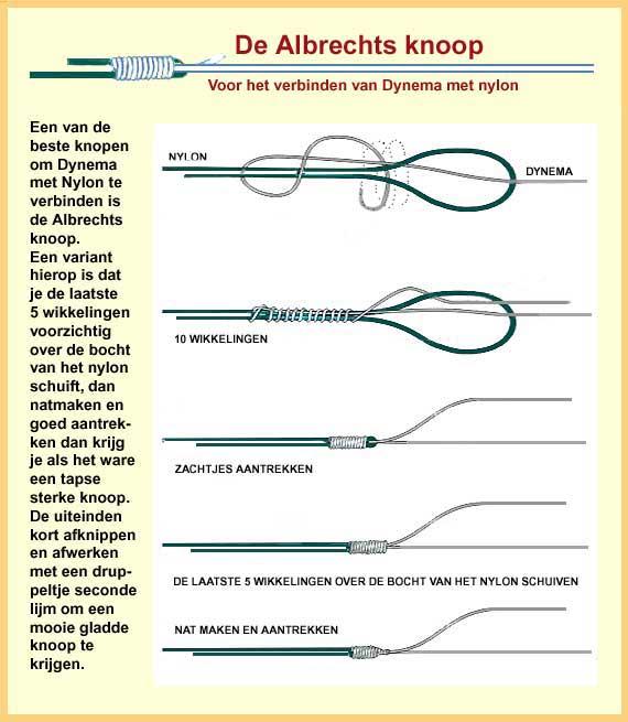 albrechts-knoop-1