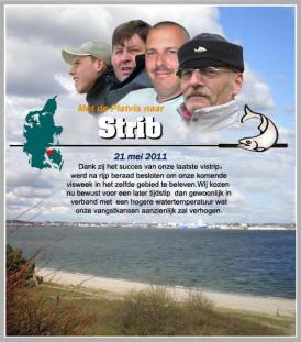strib-2011-pag1